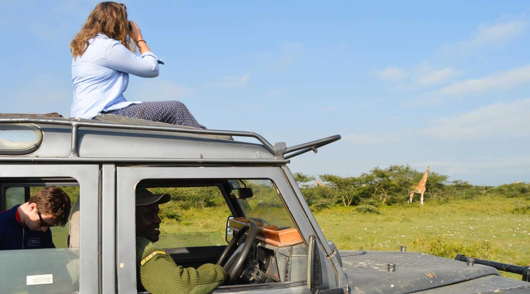 Projects Abroad conservation volunteers in Kenya observe Giraffes during their Giraffe and Lion Conservation project.